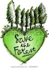 Save the Forests Essay in English in 500 words